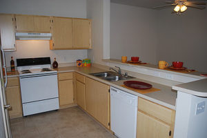 Kitchen with oven, fridge, sink, dishwasher and cabinets